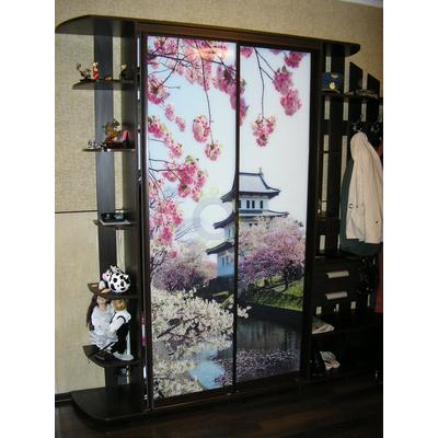Шкаф-купе в прихожую 2-х дверный, стекло с рисунком